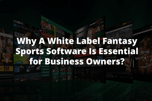 Why A White Label Fantasy Sports Software Is Essential for Business Owners? - AtoAllinks
