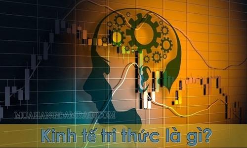 Kinh tế tri thức là gì? Có vai trò như thế nào trong sự phát triển kinh tế
