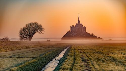 Fog and light via Jean Michel