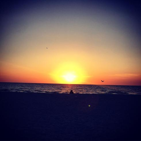Sunset on the beach in Florida                                                                          #sunset #beach #Florida via Mikaela Rakos