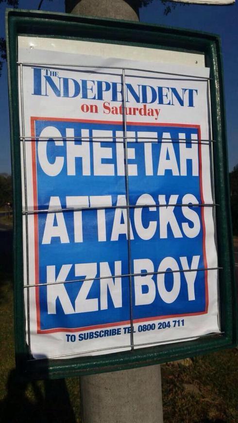 #KwaCheetah #cheetahattack on 10 year old schoolboy #southaf... via Donnette Davis