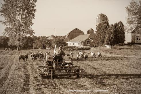 Here's my visit to a family farm this summer in Oostburg.  S... via JamesMeyerMedia