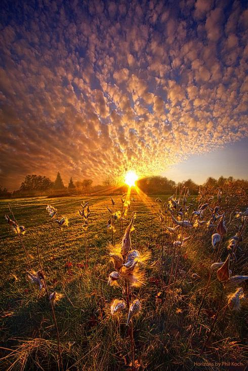 """Whisper the Wind Into the Light""                                     Wisconsin Horizons By Phil... via Phil Koch"