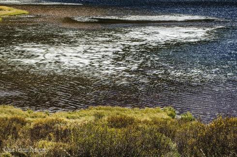 """What Moves Me""                                     Piney Lake, Colorado via Janie Viehman Photography"