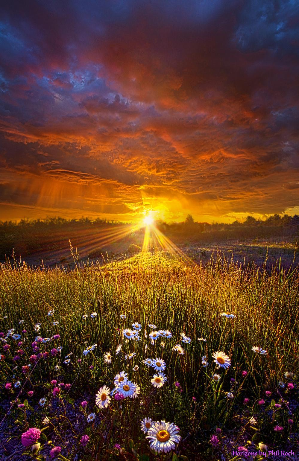"""""""Come Again Another Day""""                                         Wisconsin Horizons By Phil Koch. via Phil Koch"""
