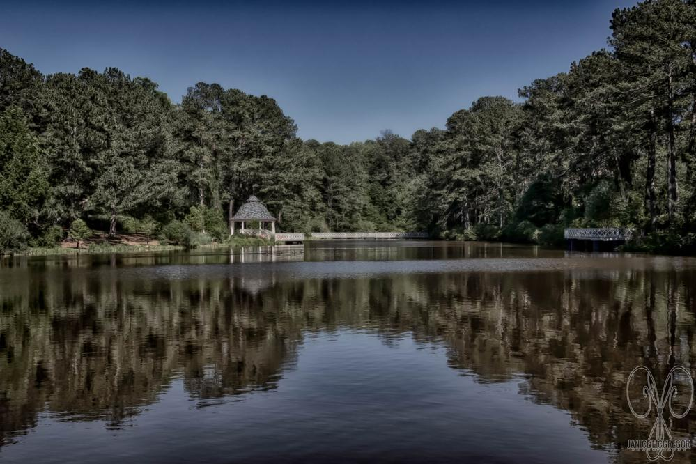 A View from the far end of the lake at the vines botanical g... via Janice McGregor