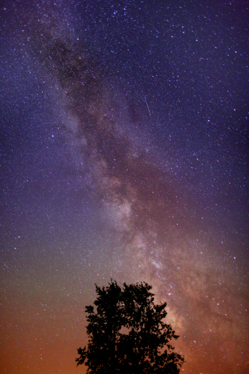 Late night milky way over a lonely tree. #astrophotography #... via Reid Collins