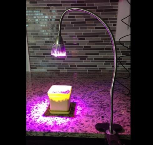 SALE!                                     Premium LED Grow Light - Hydroponics Greenhouse Kit fo... via michael jones