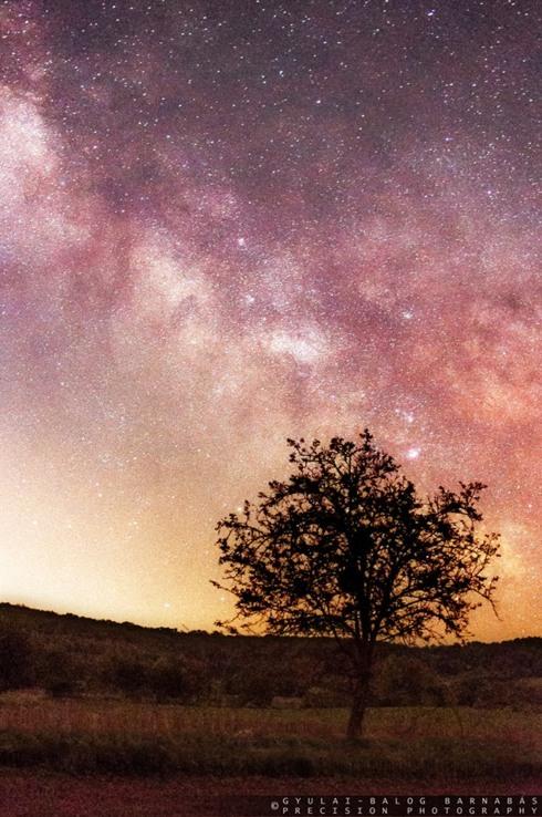 Stardust via Barnabás Gyulai-Balog