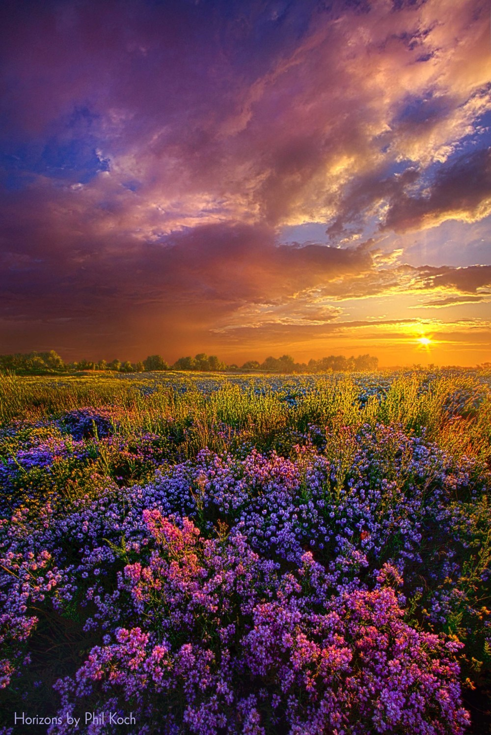 """""""Life Is Measured In Moments""""                                         Wisconsin Horizons By Phil Koc... via Phil Koch"""