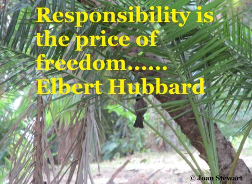 Responsibility is the price of freedom ~ Elbert Hubbard                                                                          #qu... via Joan Stewart