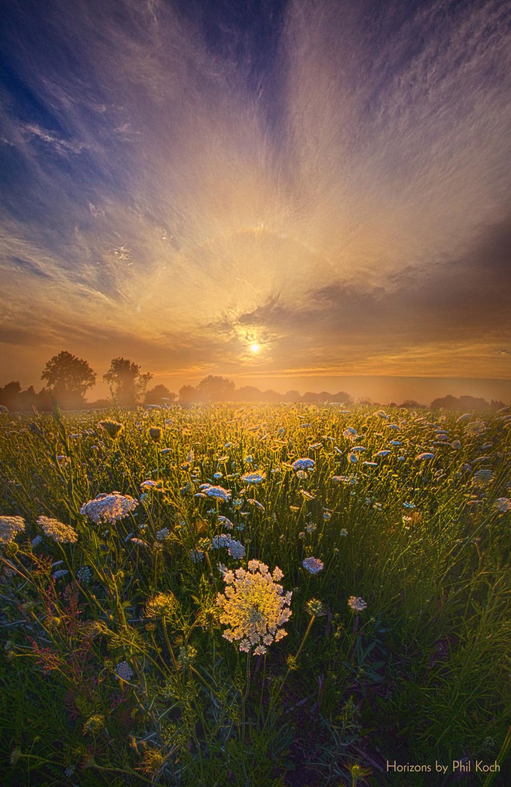 """""""Echos The Sound Of Silence""""                                         Wisconsin Horizons By Phil Koch... via Phil Koch"""