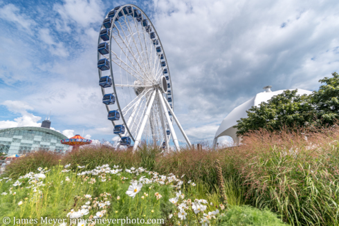 Here's the Navy Pier ferris wheel from our trip to #Chicago ... via JamesMeyerMedia