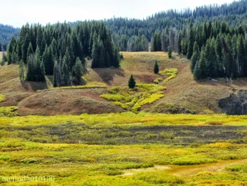 Wyoming via Melinda Stogsdill