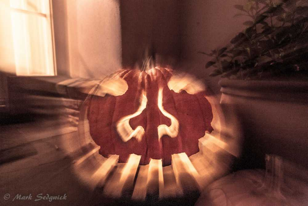A little seasonal fun!                                         What Pumpkins Do When WE are not Look... via Mark Sedgwick Photography