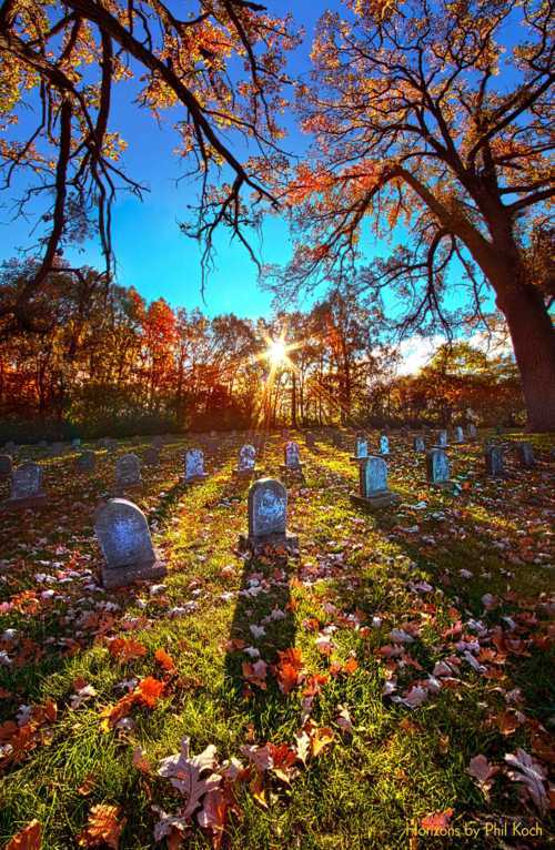 """Grave Matters""                                     Wisconsin Horizons By Phil Koch. via Phil Koch"