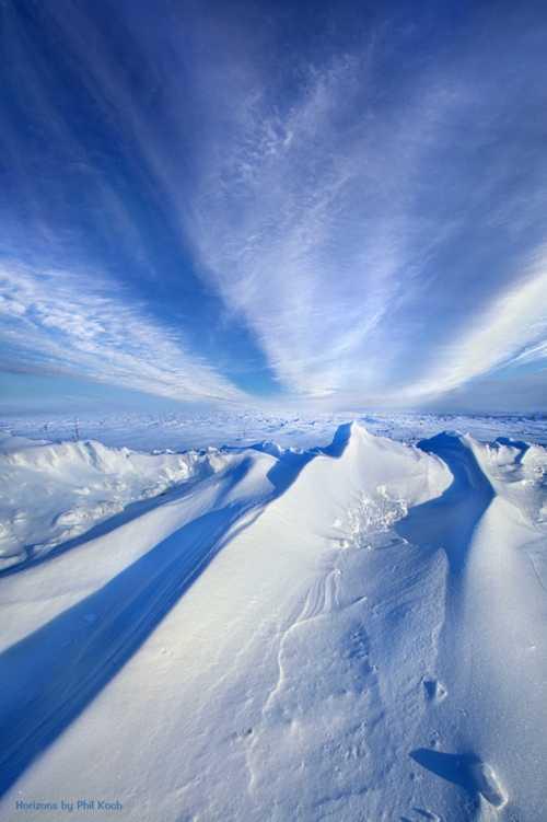 """Life Below Zero""                                     Wisconsin Horizons By Phil Koch. via Phil Koch"